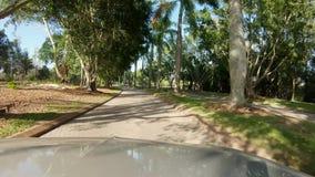 Conduzir através de uma palmeira tropical alinhou a estrada que divide um campo de golfe filme