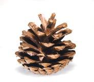 Cone Imagem de Stock