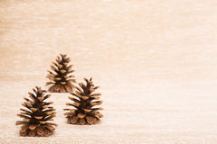 Cone as a fir tree decor on illuminated background Royalty Free Stock Image