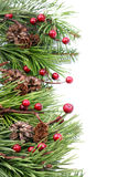 Cone and berry Christmas border Stock Photography