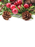 Cone and berry Christmas border Royalty Free Stock Images