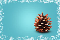 Cone on blue background framed with snow Stock Photography