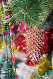 Cone on christmas tree Stock Photography