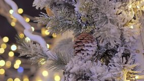 Cone close-up on New Year`s fir. The city is decorated for the holiday. Colored garland. Against the background of blue lights out of focus stock video footage