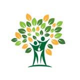 Ícone cura da folha da árvore genealógica Foto de Stock