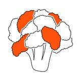 ?cone da couve-flor ilustração royalty free