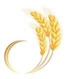 Ícone das orelhas do trigo Foto de Stock