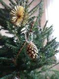 Cone de abeto decorativo na árvore de Natal fotos de stock