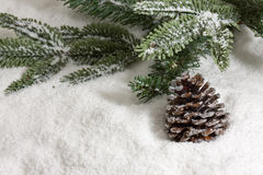 Cone de abeto do inverno Fotografia de Stock Royalty Free