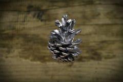 Cone de prata que quadro o fundo borrado Foto de Stock