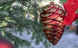 Cone do cedro vermelho do brinquedo do Natal e flor da poinsétia imagem de stock