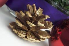 Cone do pinho, globos vermelhos e ornamento do Natal Fotografia de Stock Royalty Free