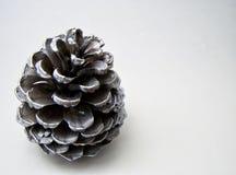 Cone isolado do pinho de prata em um fundo branco para o Natal e conceitos sazonais do cartão Foto de Stock Royalty Free