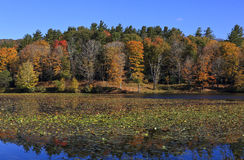 Cone Lake in the Fall Royalty Free Stock Photography