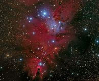Cone Nebula. Deep exposure of the Orion constellation showing all the celestial gems including M42, The Orion Nebula, The Horsehead Nebula, the `Boogie Man` royalty free stock photography