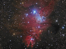 The Cone Nebula Stock Images