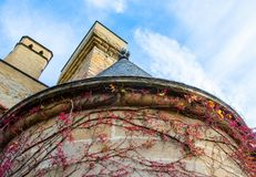 Cone perfeito do castelo de Olite, feito da parte inferior para cobrir, com a hera vermelho-hued em torno de suas paredes, deixan fotografia de stock royalty free
