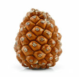 Cone of Siberian Pine Isolated on White Stock Photos