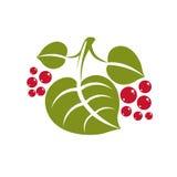 Ícone simples do vetor da folha da mola, natureza e illus de jardinagem do tema Fotografia de Stock