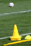 Cone training. Of green grass Royalty Free Stock Photo