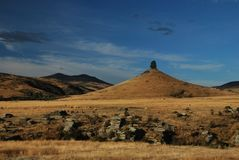 Cone tree hill near Otago Central Rail Trail in Middlemarch during a summer day, royalty free stock photo