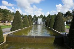 Cone tree and a water pond with fountain in a garden in Lisse, N royalty free stock images