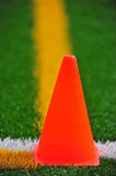 Cone on a turf field Royalty Free Stock Photo