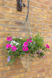 Cone wicker hanging basket with pink and white petunia flowers Royalty Free Stock Photo