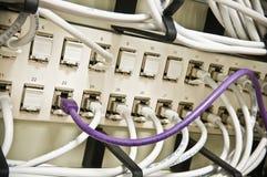 Conectado Foto de Stock