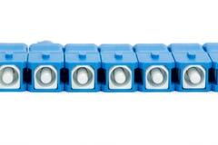 Conector azul do SC da fibra ótica Fotos de Stock