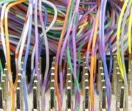 Conector de cable Fotografía de archivo libre de regalías
