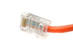 Conector de cable de Ethernet Foto de archivo libre de regalías