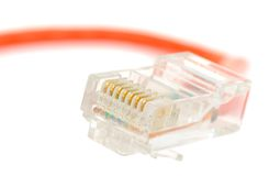 Conector de cable de Ethernet Fotos de archivo