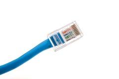 Conector de cable de Ethernet Imagen de archivo