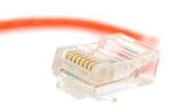 Conector de cabo do Ethernet Fotos de Stock