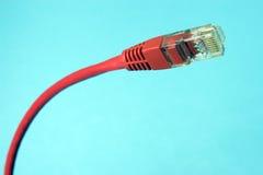 Conector de Ethernet CAT5 imagen de archivo libre de regalías