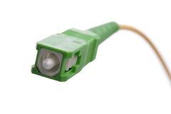 Conector de fibra óptica Imagens de Stock