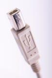 Conector del enchufe del cable del USB Foto de archivo libre de regalías
