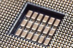 Conector para el procesador Foto de archivo libre de regalías