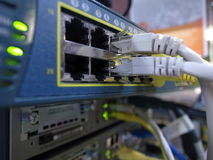 Conector RJ45 del dispositivo de la red Imagenes de archivo