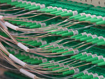 Conectores de la fibra óptica en un panel Foto de archivo