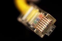 Conectores do Ethernet fotos de stock