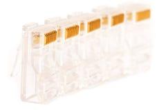 Conectores RJ45 Imagem de Stock