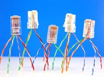 Conectores RJ45 para a rede Imagens de Stock