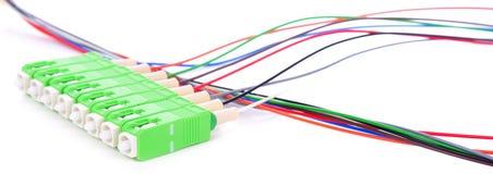 Conectores verdes do SC da fibra ótica no fundo branco fotos de stock royalty free