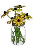Coneflowers amarillo Imágenes de archivo libres de regalías
