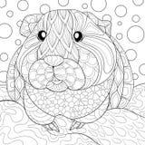 Conejillo de Indias adulto de la página del colorante Imagen de archivo