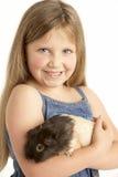 Conejillo de Indias del animal doméstico de la explotación agrícola de la chica joven Fotografía de archivo