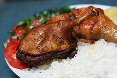 Conejillo de Indias frito Imagen de archivo libre de regalías