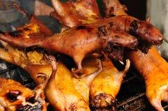 Conejillos de Indias asados en Suramérica Fotos de archivo